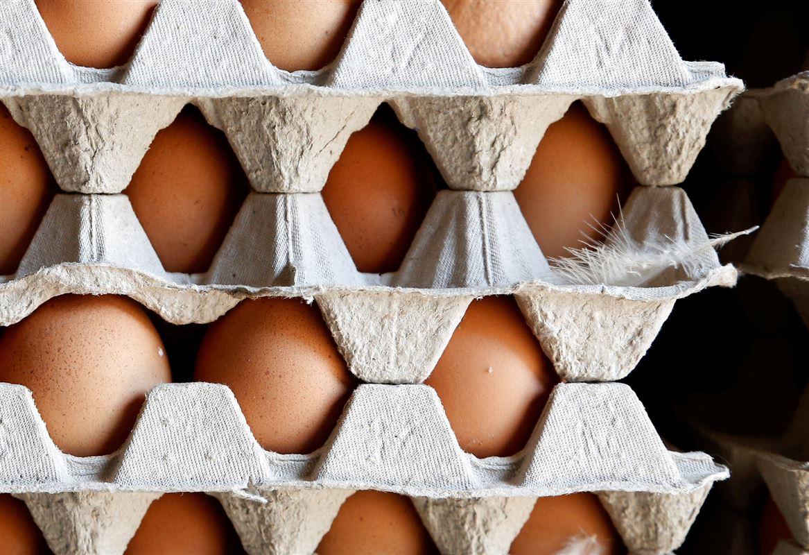 æg i bakker
