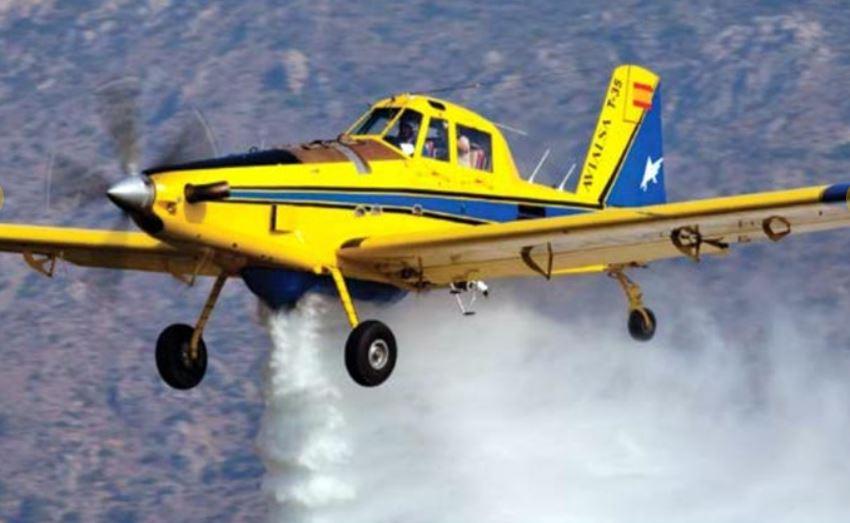 Et lille gult fly, som sprøjter vand ud fra bugen