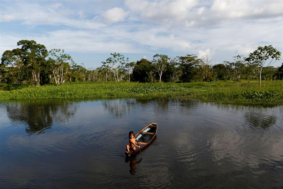 Amazonas jungeln, hvor et barn i en primitiv båd sejler på floden