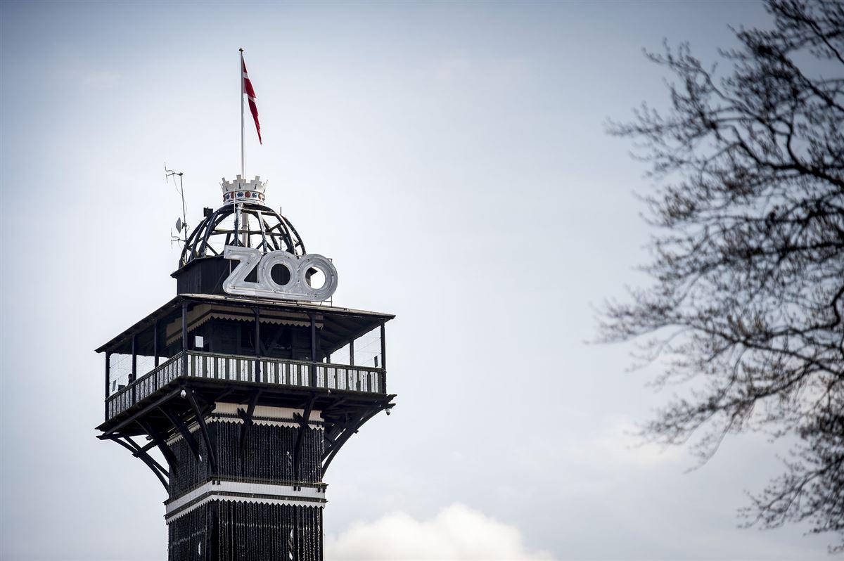 Tårnet i Københavns Zoo