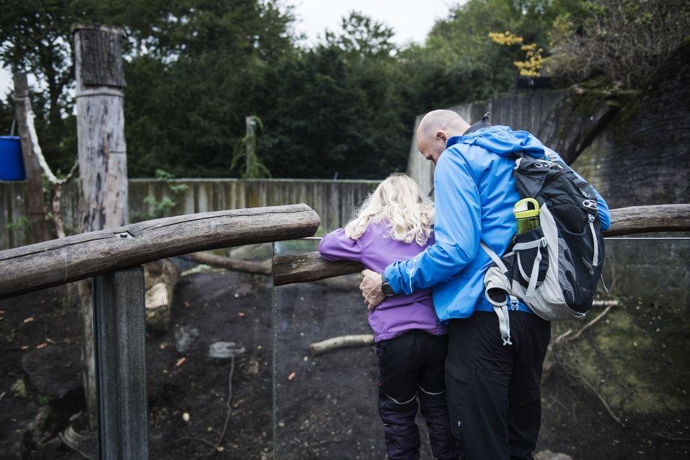 forælder og barn i Københavns Zoo