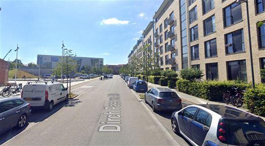 Et billede af Dirch Passers Allé på Frederiksberg