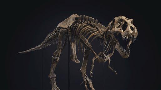 Skelet af Tyrranosaurus Rex