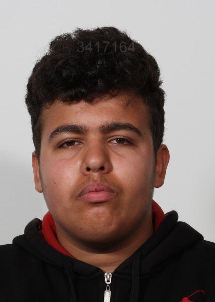 Helmi Mossa Hameed er mørk i huden. Billedet ligerne et forbryder foto. Man ser ham forfra. Han hverken smiler eller ser sur ud. Han kigger direkte i kameraet.