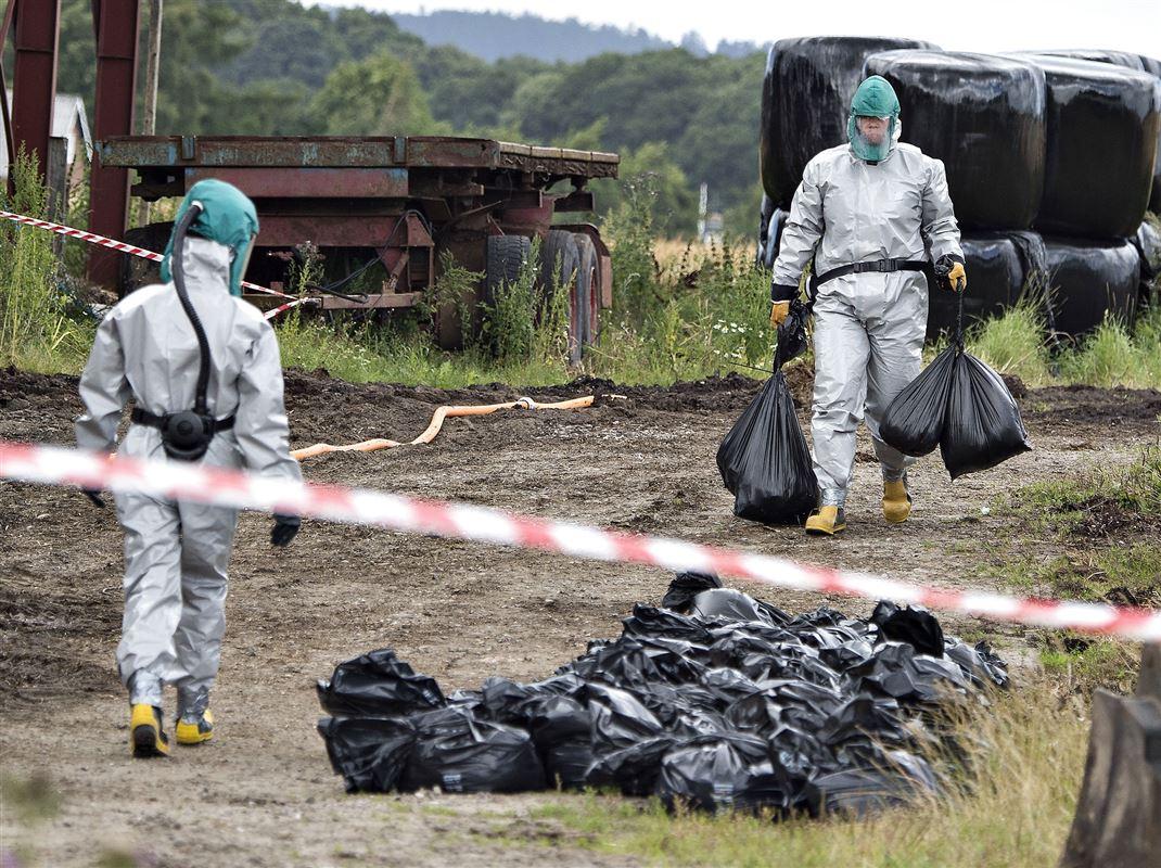 Mænd i beskyttelsesdragter bære poser med døde fugle