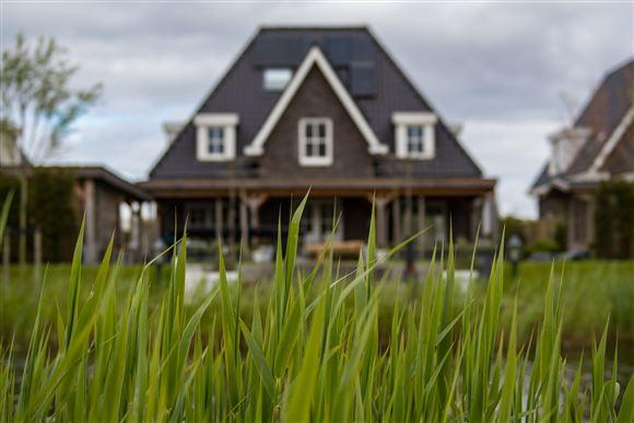 Græs med hus i baggrunden