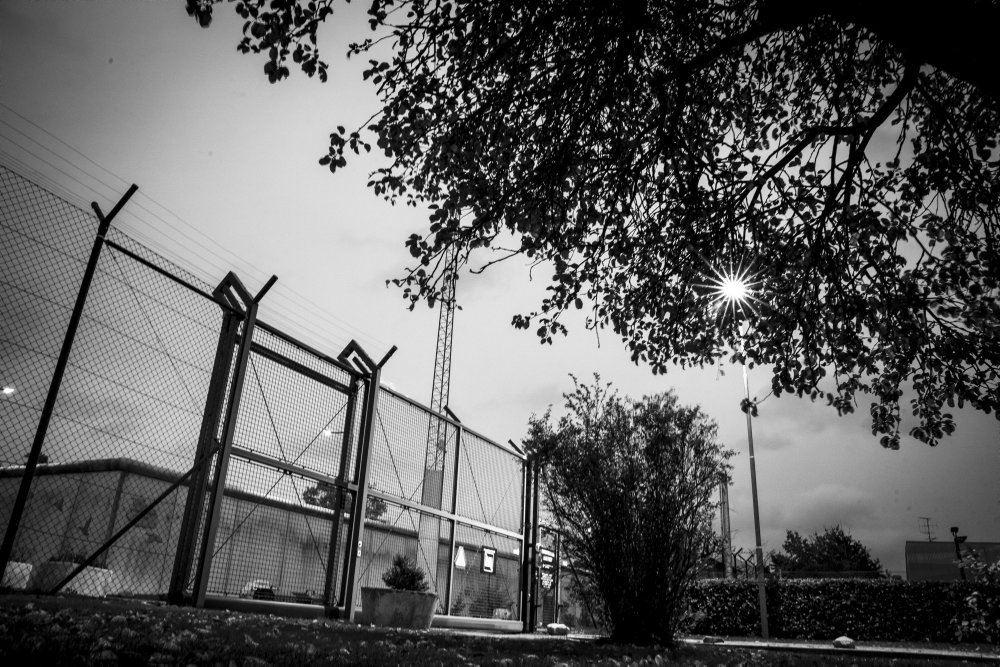 hegn ved Herstedvester Fængsel