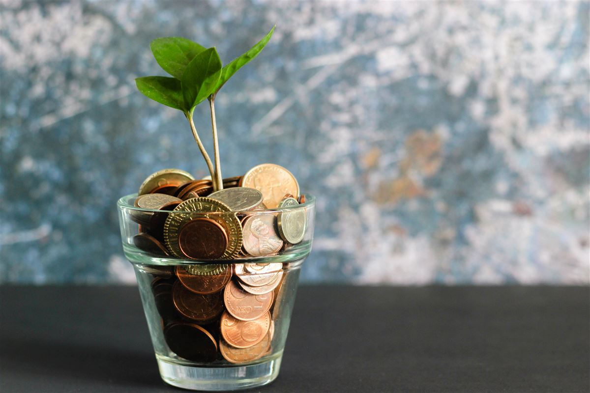 Et glas med mønter og en lille stikling i