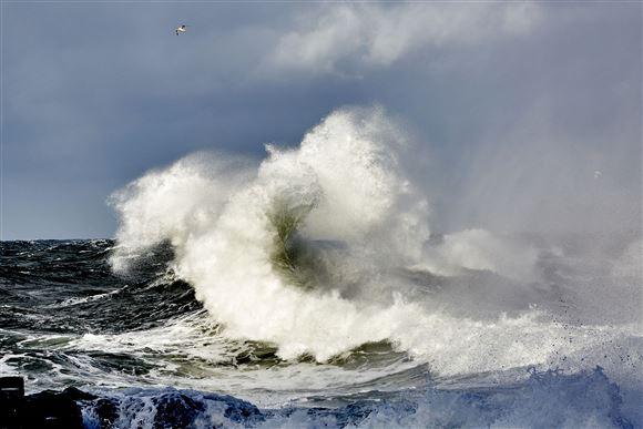 Store bølger i hård vind