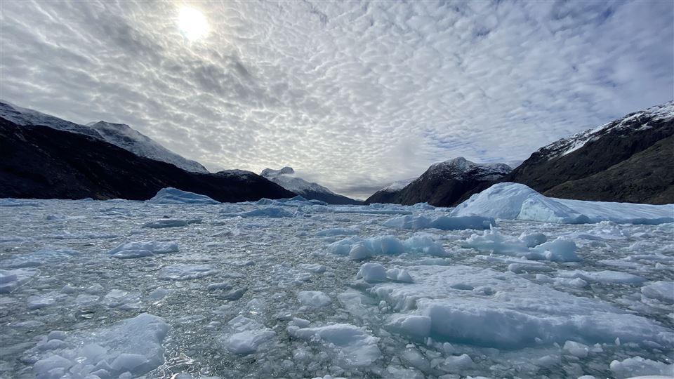 Isbjerge i fjord.