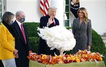 Donald Trump løfter hånden foran kalkun foran det hvide hus