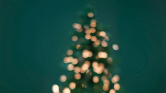 billede af et juletræ