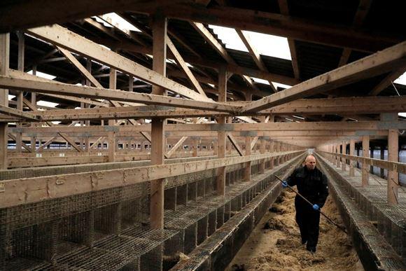 Tomme bure på minkfarm