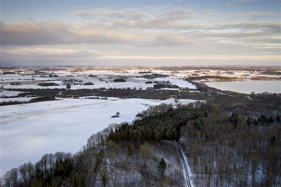 Snedækket landskab