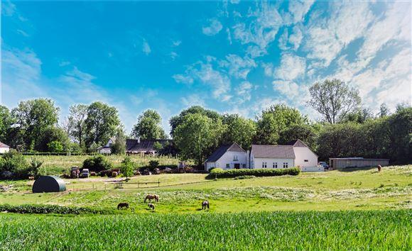 billede af ejendom i landlig idyl