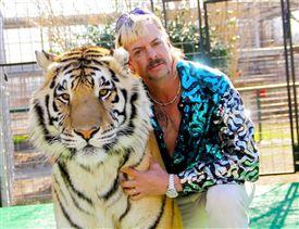 tiger og skægget mand i hawaiiskjorte