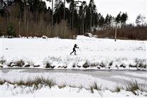 en person står på langrendsski ved en skov. Der ligger godt med sne overalt.