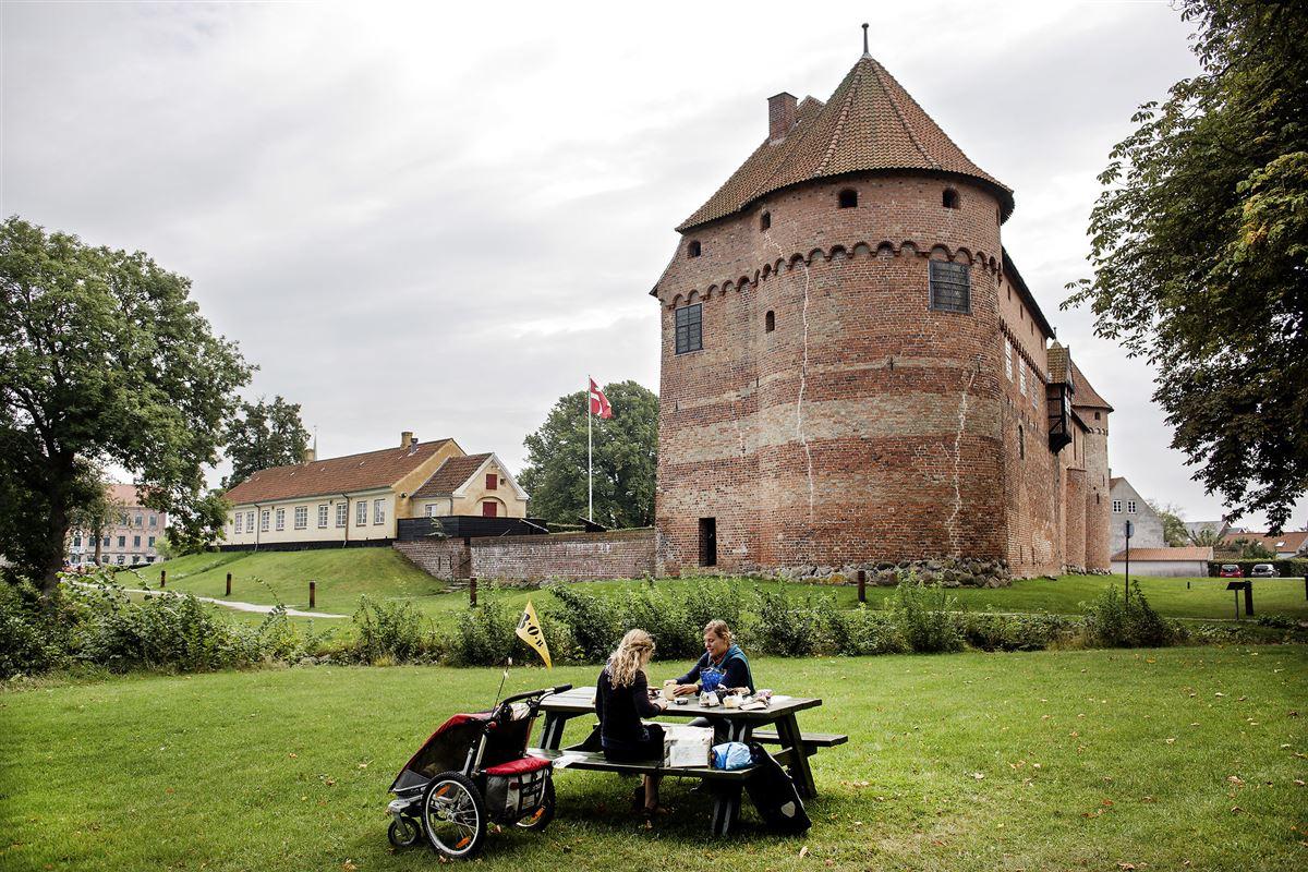 Nyborg Slot set fra parken