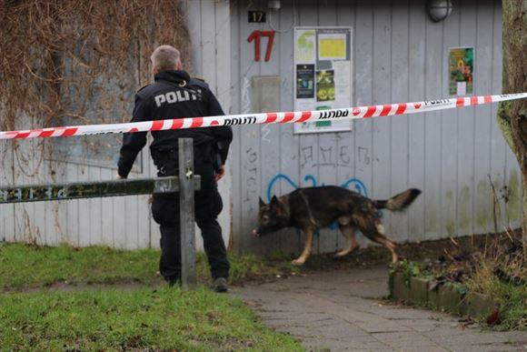 politimand og hund går ved bygning i aarhus