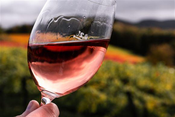 Et glas rosévin holdt op foran nogle vinmarker