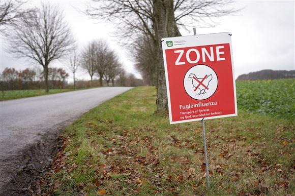 advarselsklit om fugleinfluenza med med påskriften zone