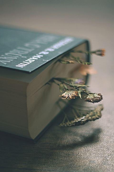 En bog med nogle blomster lagt ind i