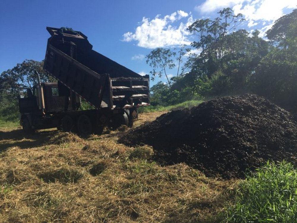 En lastbil hælder kaffe ud på jorden