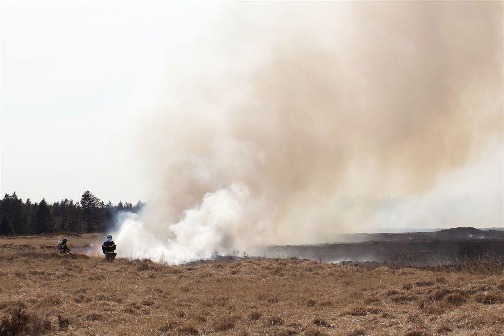 brandfolk i aktion ved brand på hede