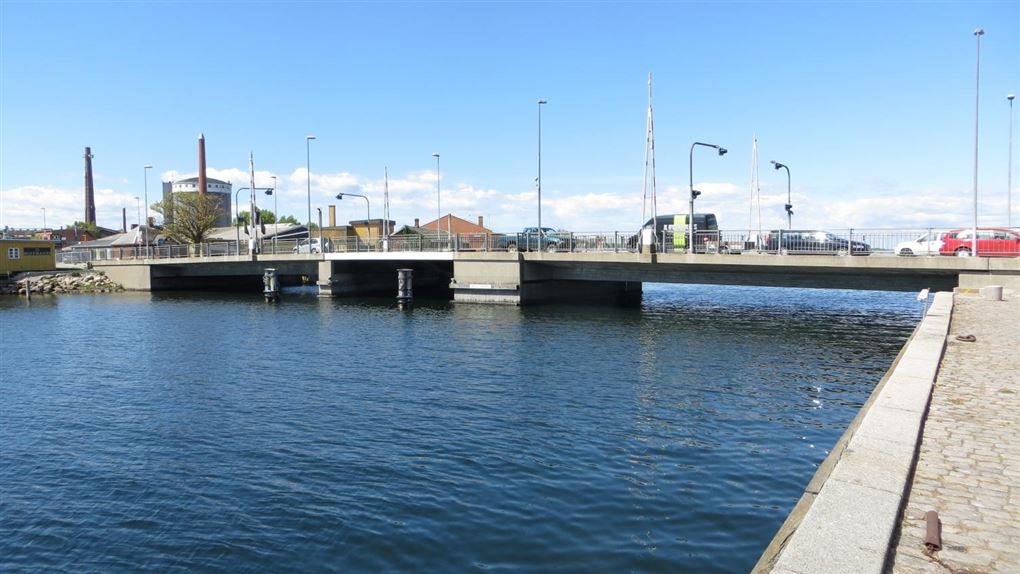 billede af Store Stegebro