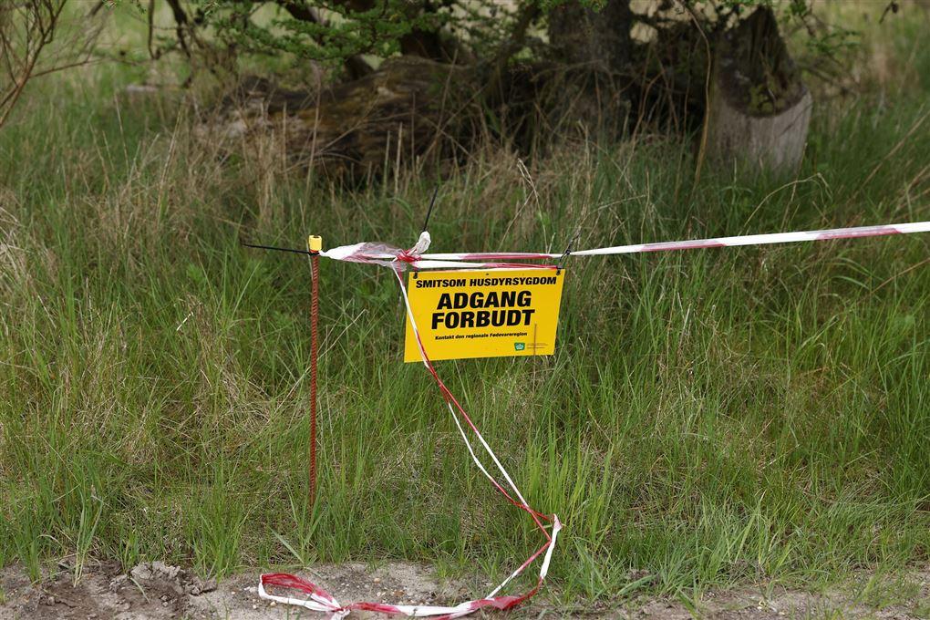 adgang forbudt-skilt ved opgravningsstedet