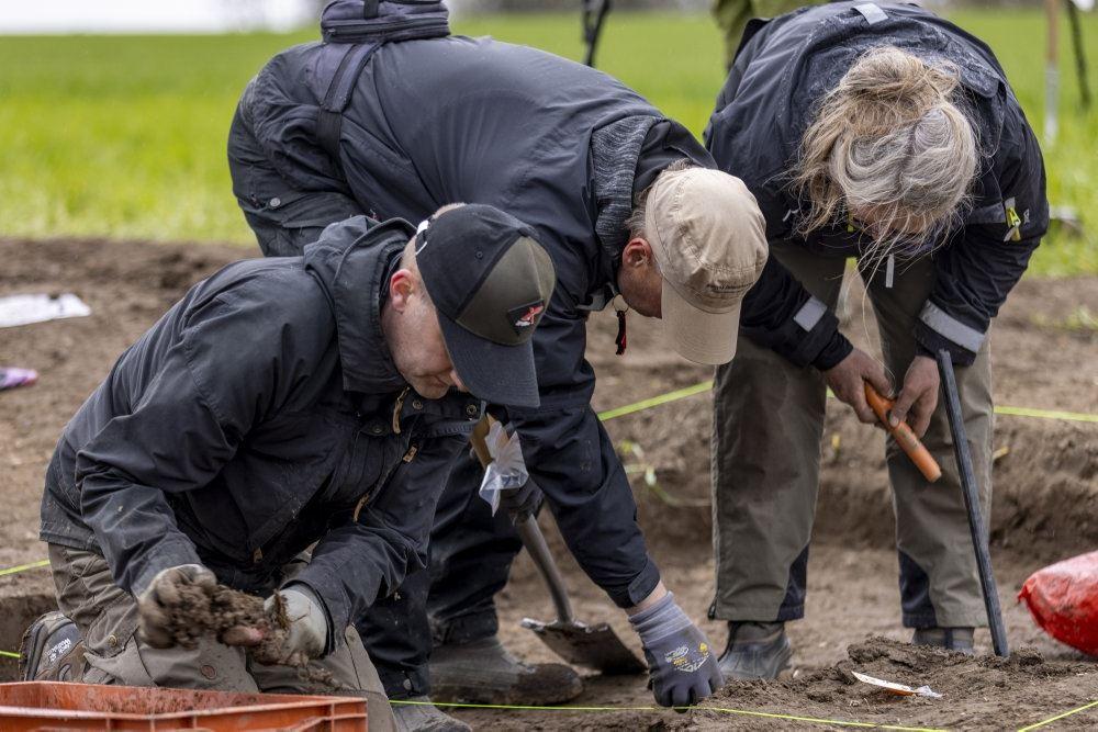 Amatørarkæologer graver i jorden