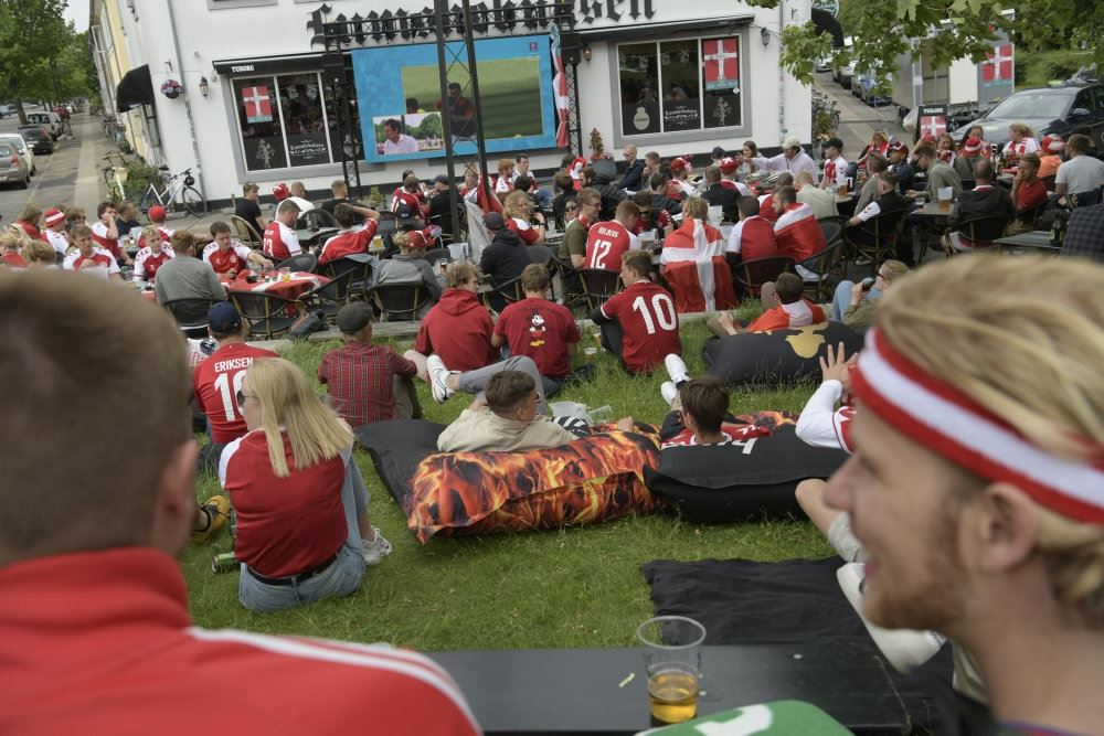 billede af danske fans