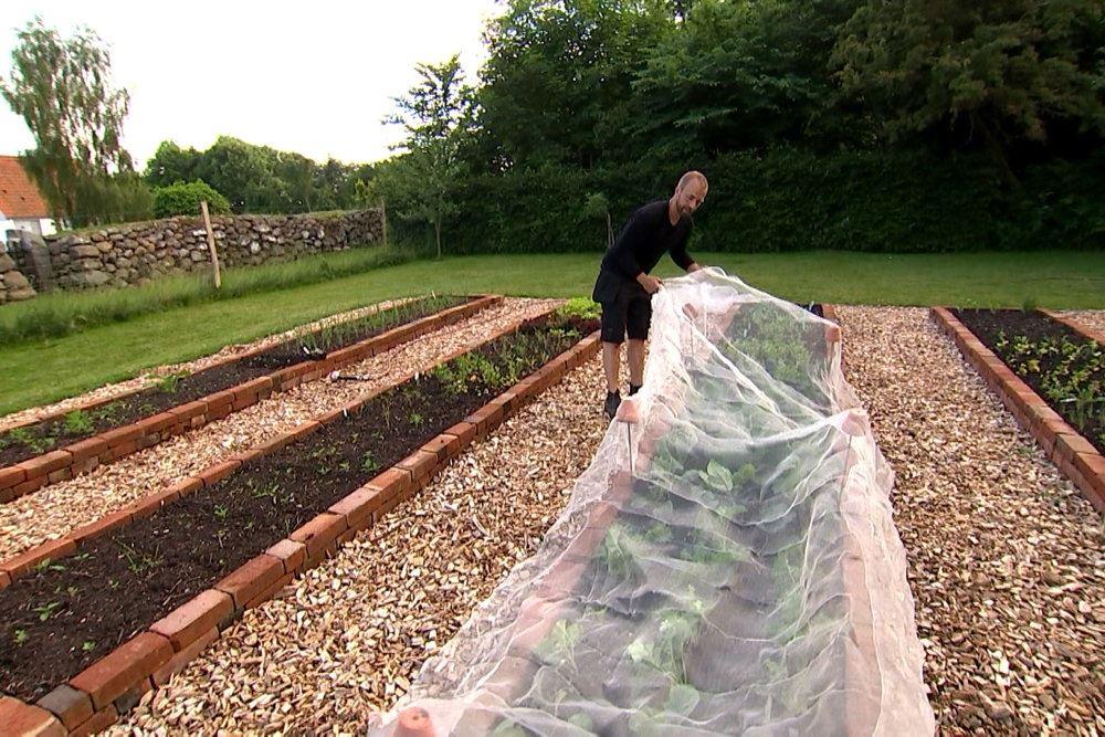 En kæmpe have, hvor noget bed er overdækket med platik