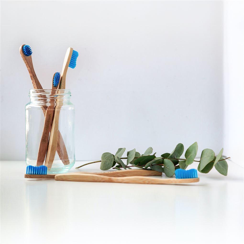 Tandbørster i et glas med en olivenkvist ved siden af