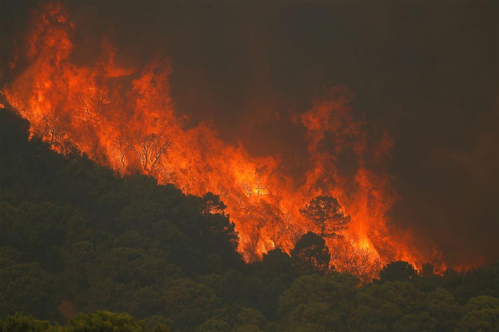 brand på bjergkæden Sierra Bermeja