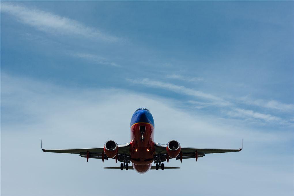 Et fly i luften