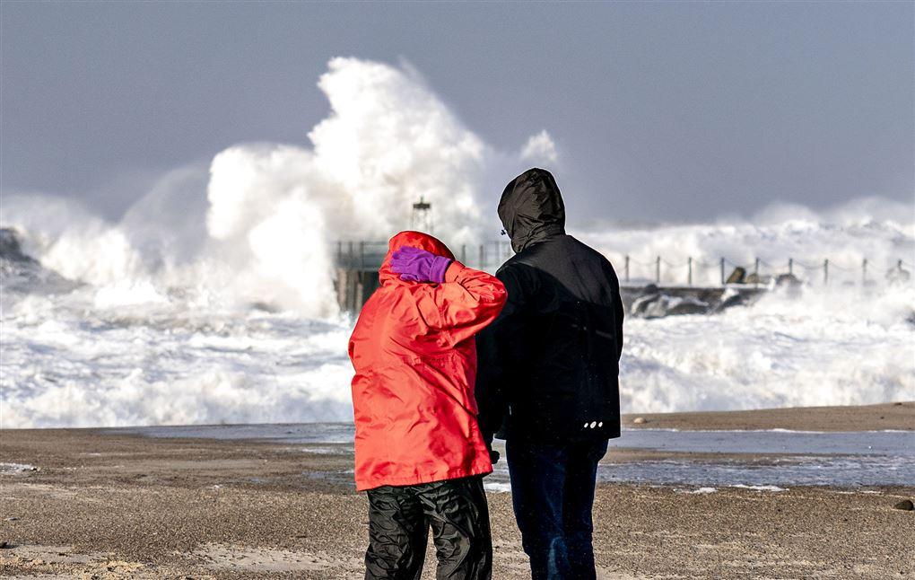 høje bølger ved strand